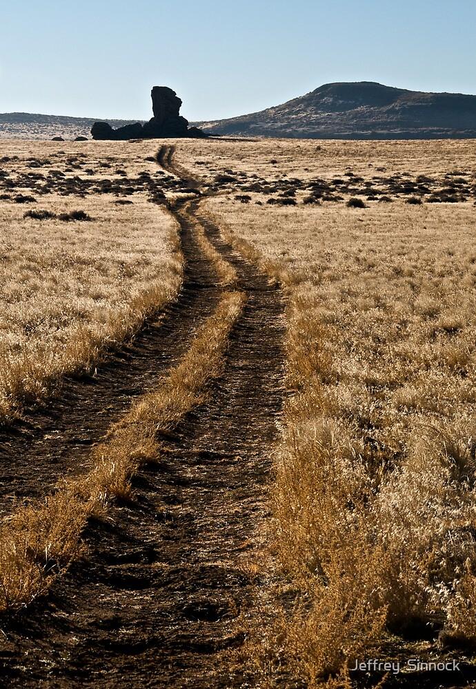 Lost road by Jeffrey  Sinnock