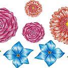 flowers_color pencil by lisenok