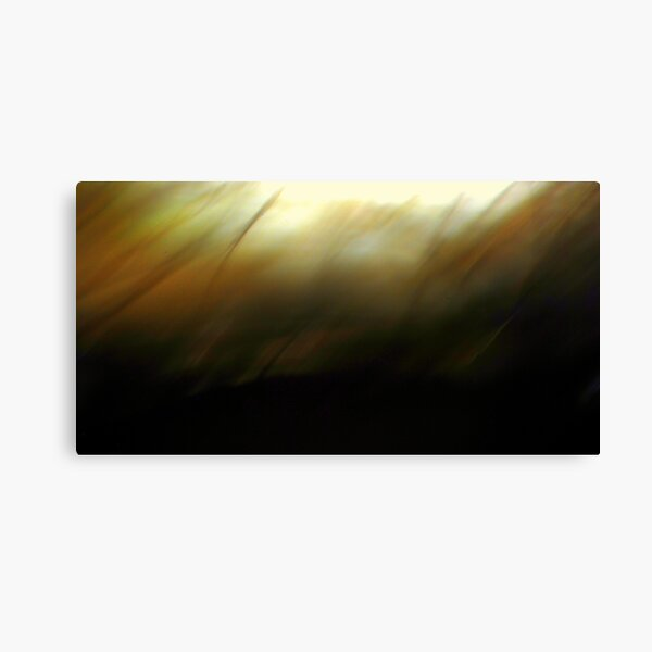 The Darkness Before.. Canvas Print