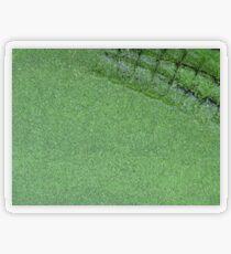 Crocovert Transparent Sticker