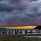 Lummi Bay Sunset  by Jim Stiles