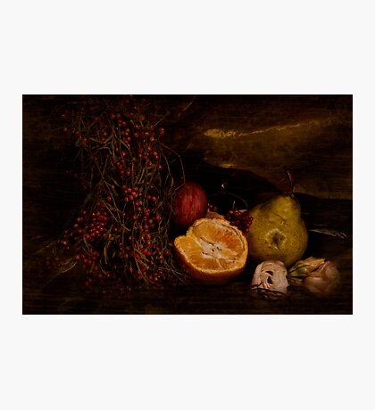 ~ still life with berries ~ Photographic Print