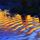 Ripples of Sunset by MacroXscape