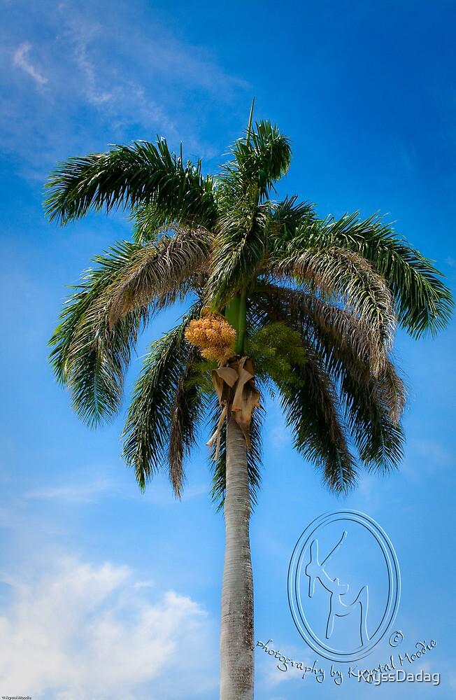 Great Palm by KryssDadag