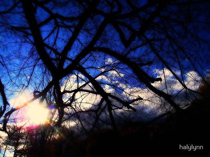 deep blue by halylynn