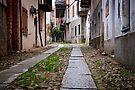 Castelnuev Nigra ~Pje'mʊnt by Adriana Glackin