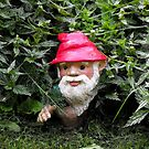 Hiding Gnome by Kayleigh Walmsley