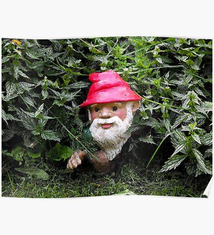 Hiding Gnome Poster