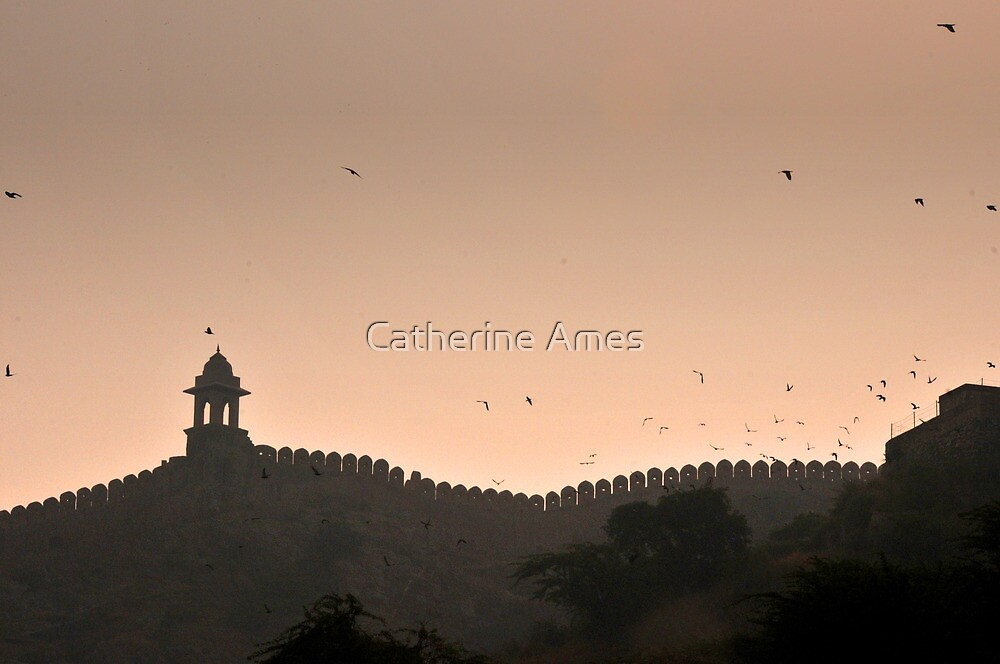 Amber Palace, Jaipur, India by Catherine Ames