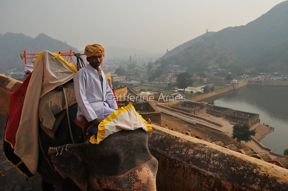 Elephant handler at the Amber Fort, Jaipur, India by Catherine Ames