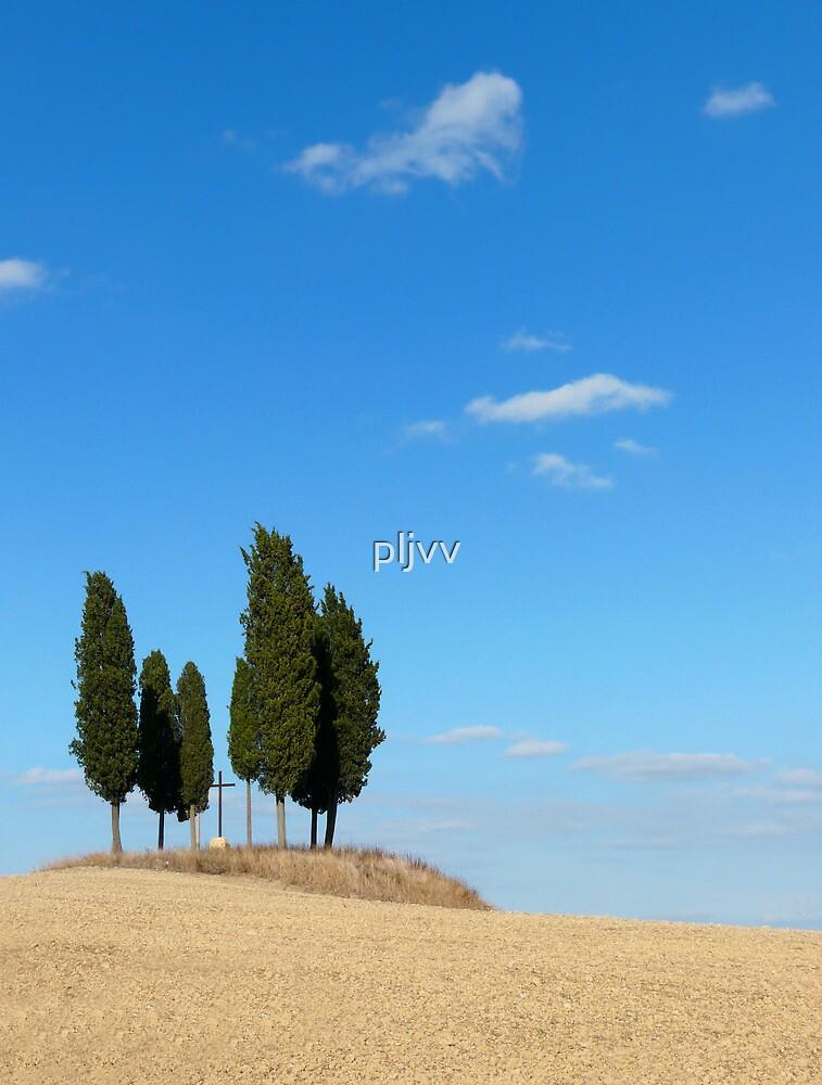 Tuscan landscape by pljvv