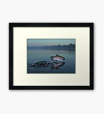 Early Riser Framed Print