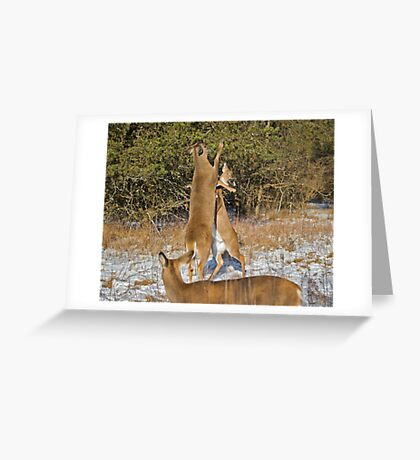 Let's get ready to rumble... Greeting Card