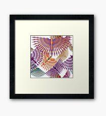 Firebird in Colours Framed Print