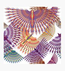 Firebird in Colours Photographic Print