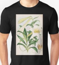 A Monograph of the Genus Lilium Henry John Elwes Illustrations W H Fitch 1880 0131 T-Shirt