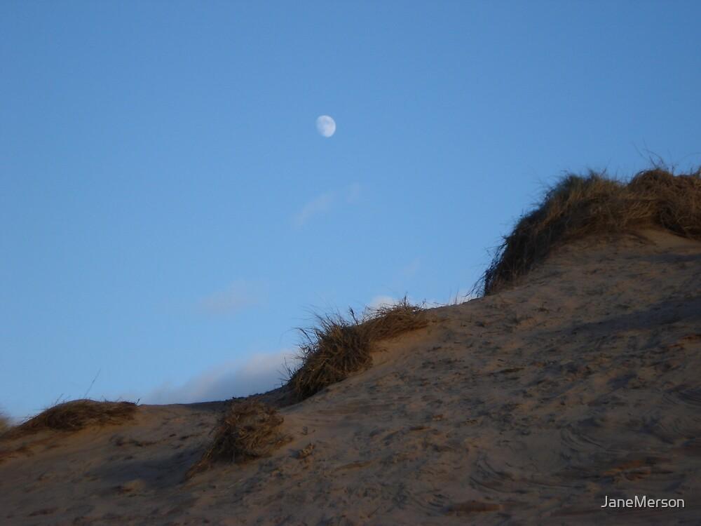 Moon at Aberdeen Beach by JaneMerson