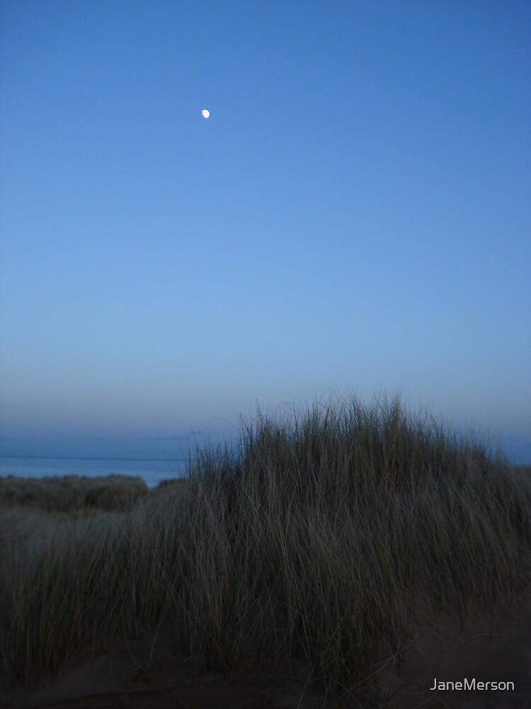 Moon over Aberdeen Beach 2 by JaneMerson