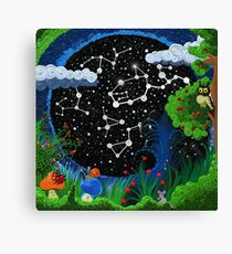 Starry sky, surrounded by grass and trees   Canvas Print