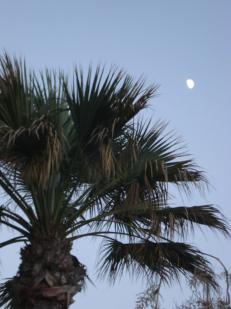Moon over Tenerife by JaneMerson