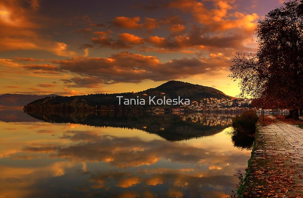 Reflections... by Tania Koleska