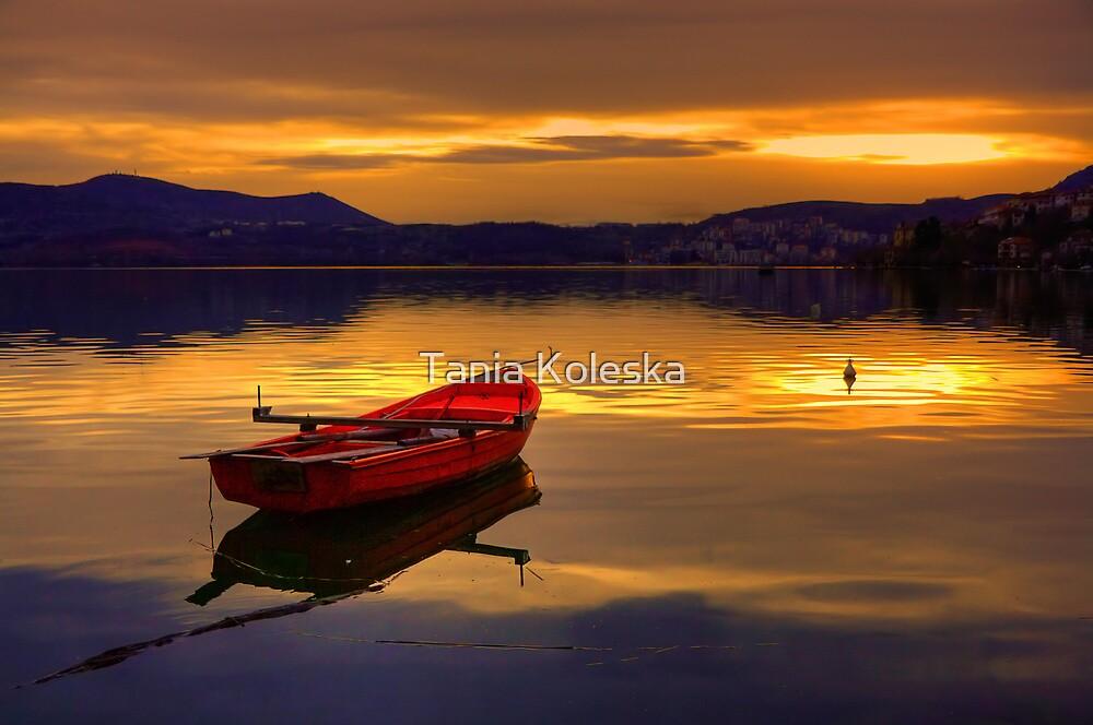 Red Boat... by Tania Koleska