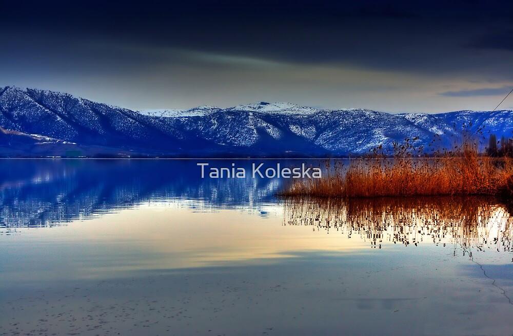 Soft Water.... by Tania Koleska