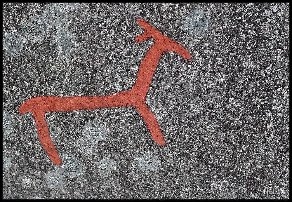 Antlers on Rock by HELUA