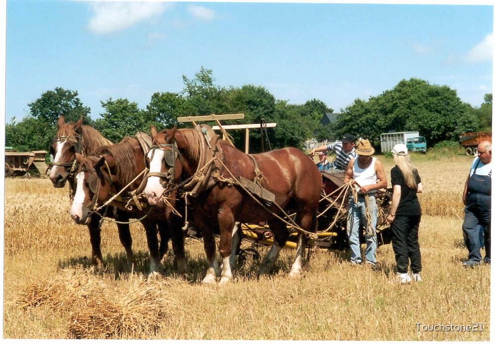 Breton Horses 1 by Touchstone21