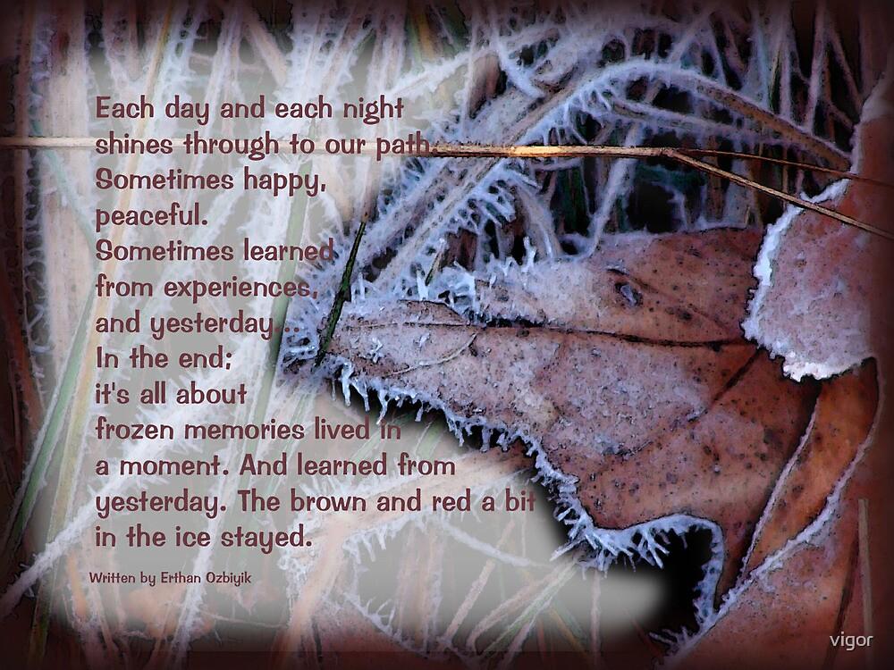 Frozen Memories by vigor