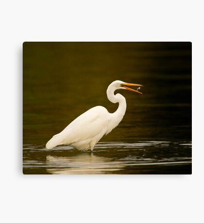 Stop playing with your food! Canvas Print