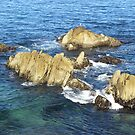 Rocks Pacific Grove Lover's Point by Sandra Gray
