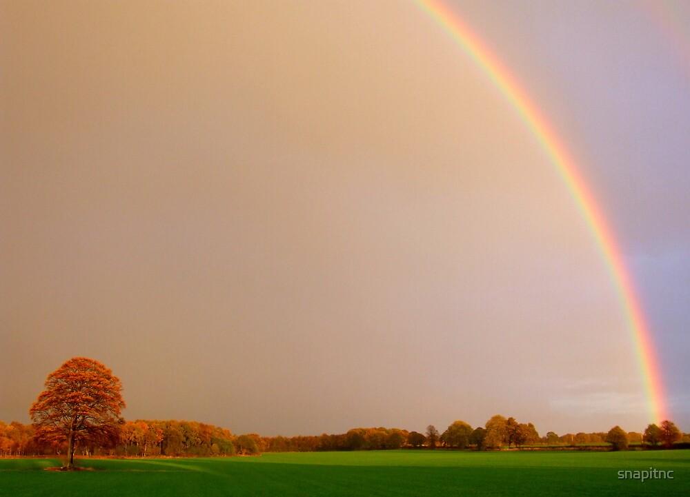 """""""RAINBOW OVER THE OAK"""" by snapitnc"""