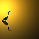 Great Blue Heron at Sunset by Michael  Herrfurth