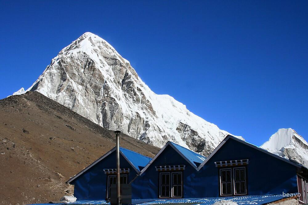Himalaya roofs by beavo