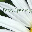 Peace I Give To You.... by debbiedoda