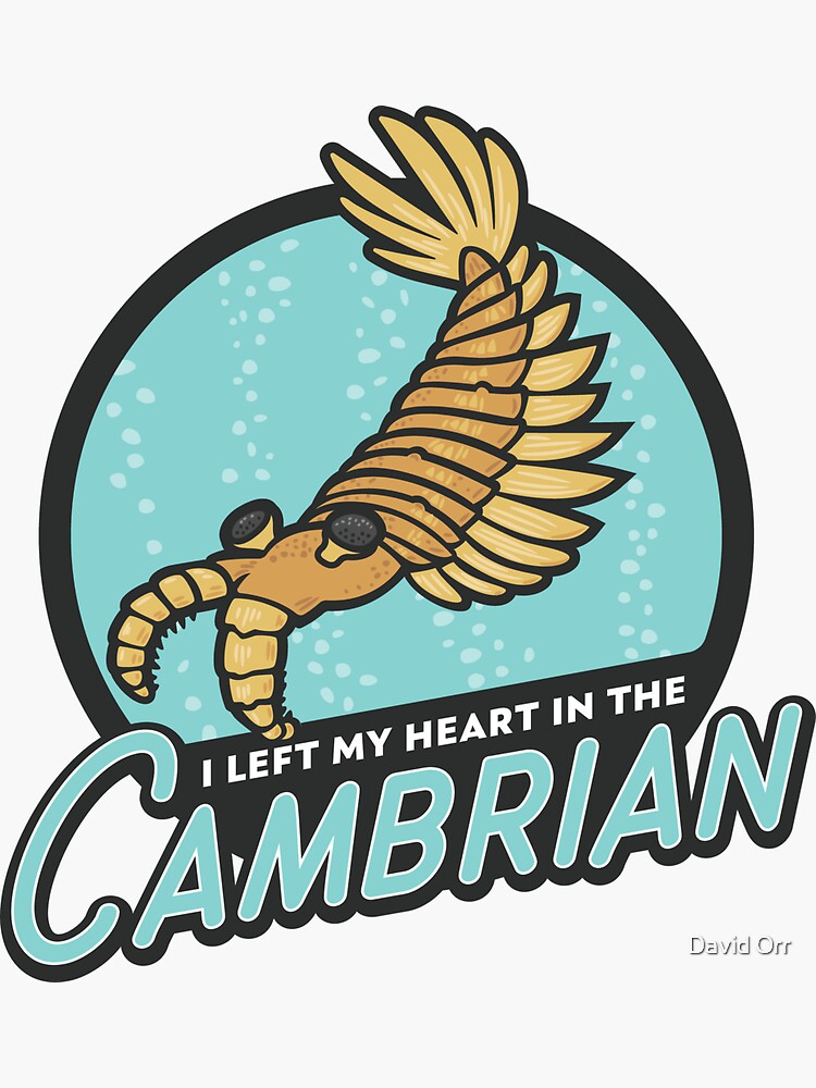 I Left My Heart in the Cambrian by anatotitan