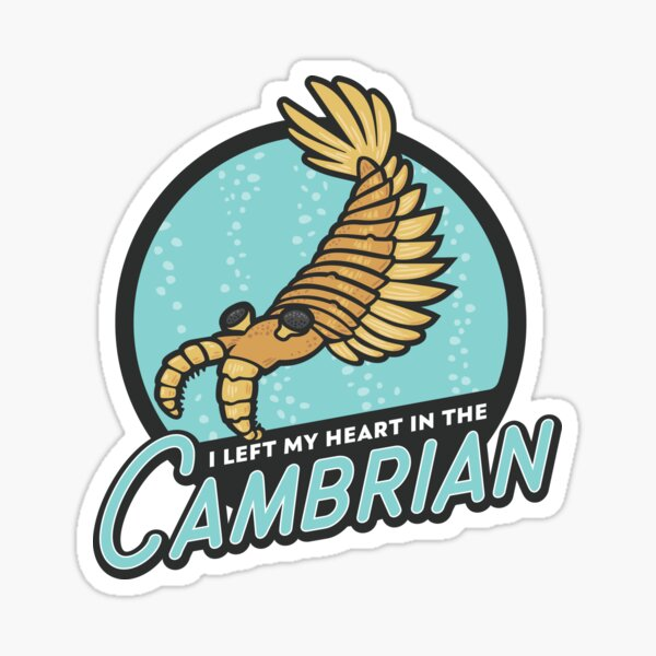 I Left My Heart in the Cambrian Sticker
