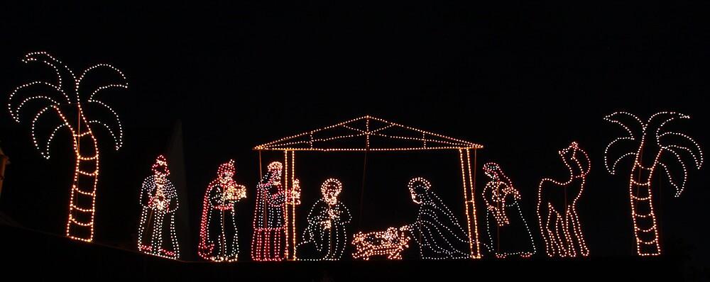 Wesley Christmas Lights, Geelong, Vic by Ian Williams