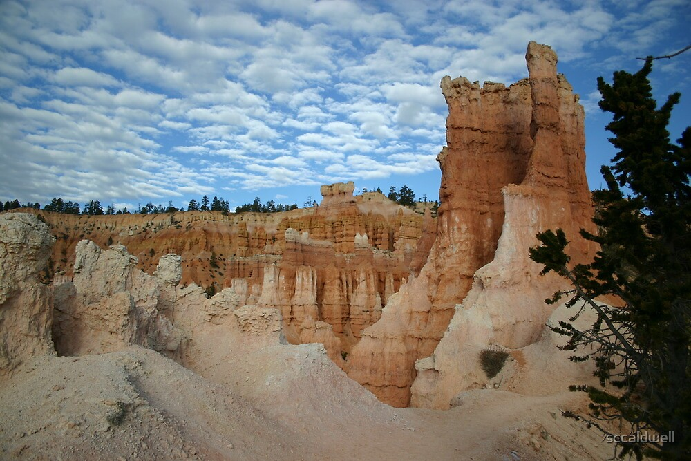 Skyline at Bryce Canyon National Park, Utah by sccaldwell