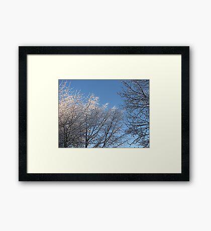 Winter Sky  Gerahmter Kunstdruck