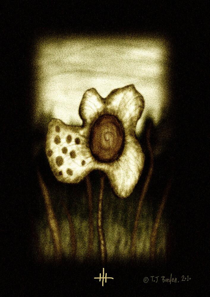 Flower by Timothy J. Burden