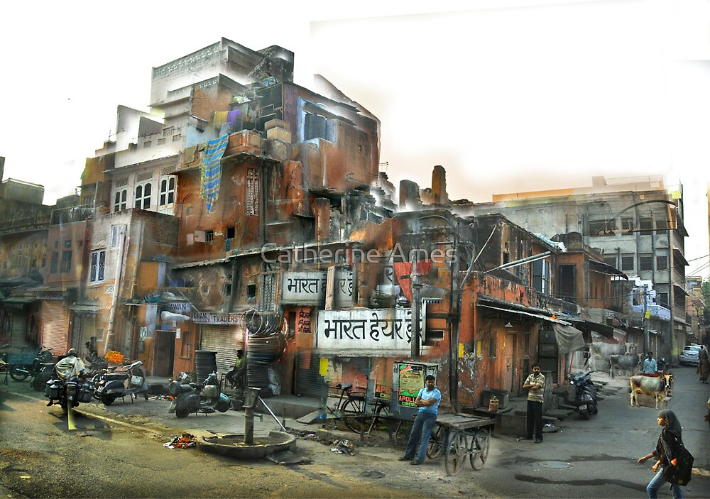 corner house, Rajasthan by Catherine Ames
