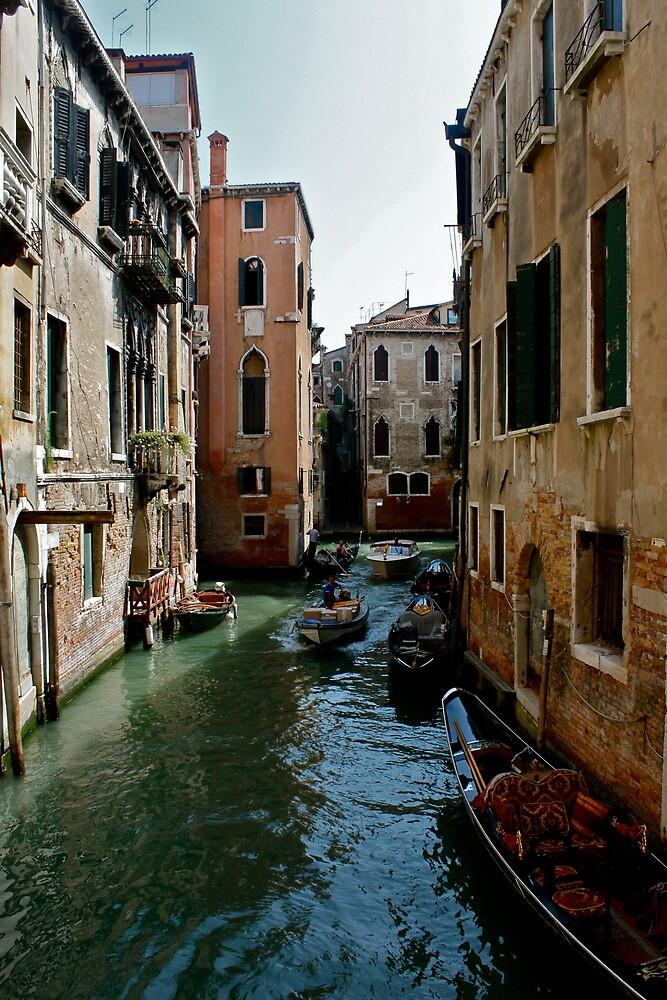Venice by Mandy Jones