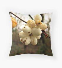 Winter's Fruit Throw Pillow