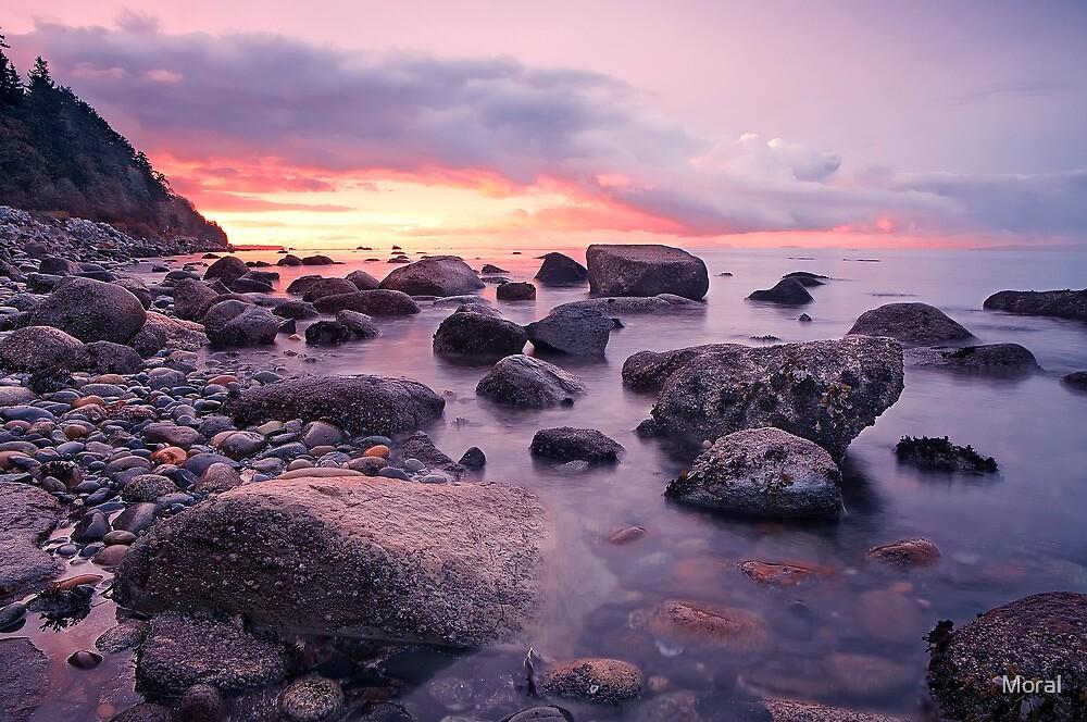 Crescent Beach Purple Dawn by Ryan Watts