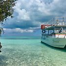 Turks and Caicos - Provo Island - Jammin' on the clear shallows by renprovo