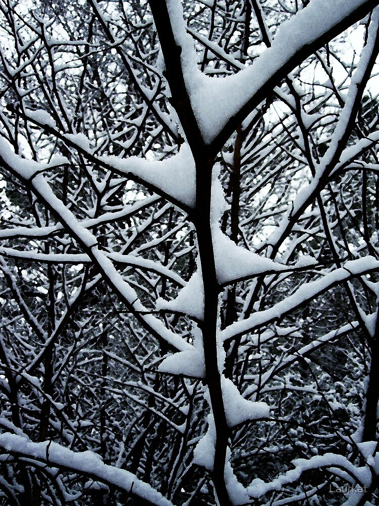 snowbranches at Cove Road's edge by Laurkat