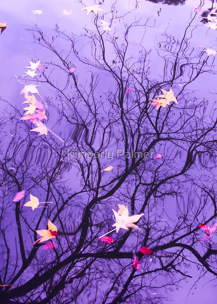Purple Reflections by Kimberly Palmer