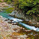Mountain stream, Takayama, Japan Alps. by johnrf